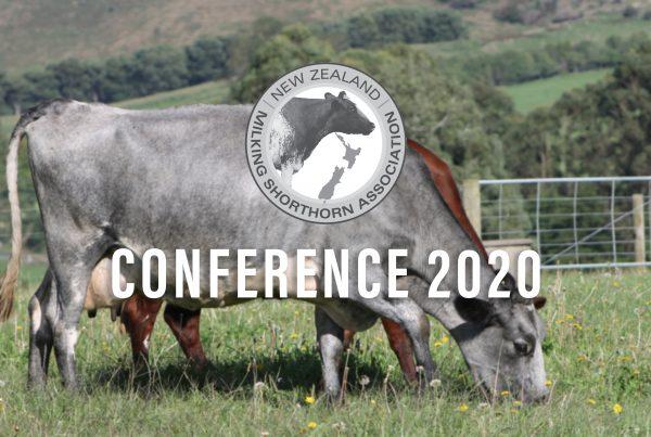 NZMSA Conference 2020