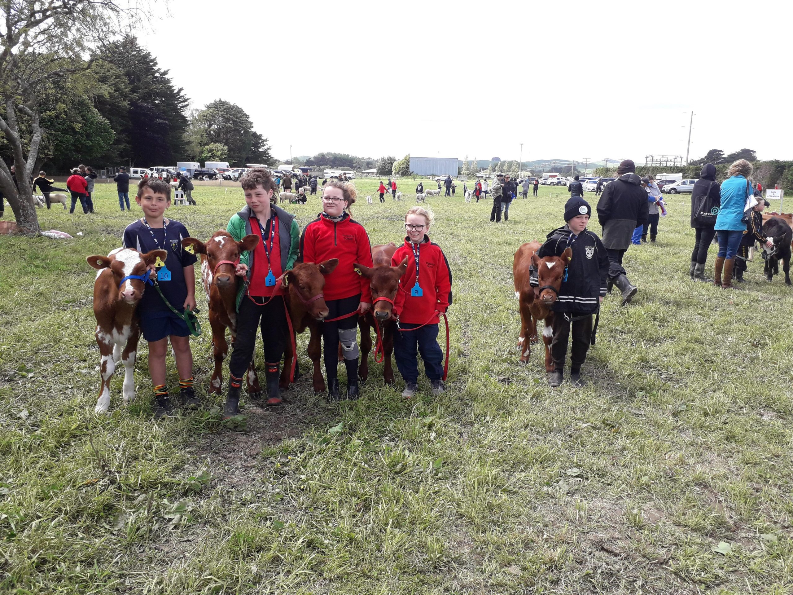 Central Districts field day