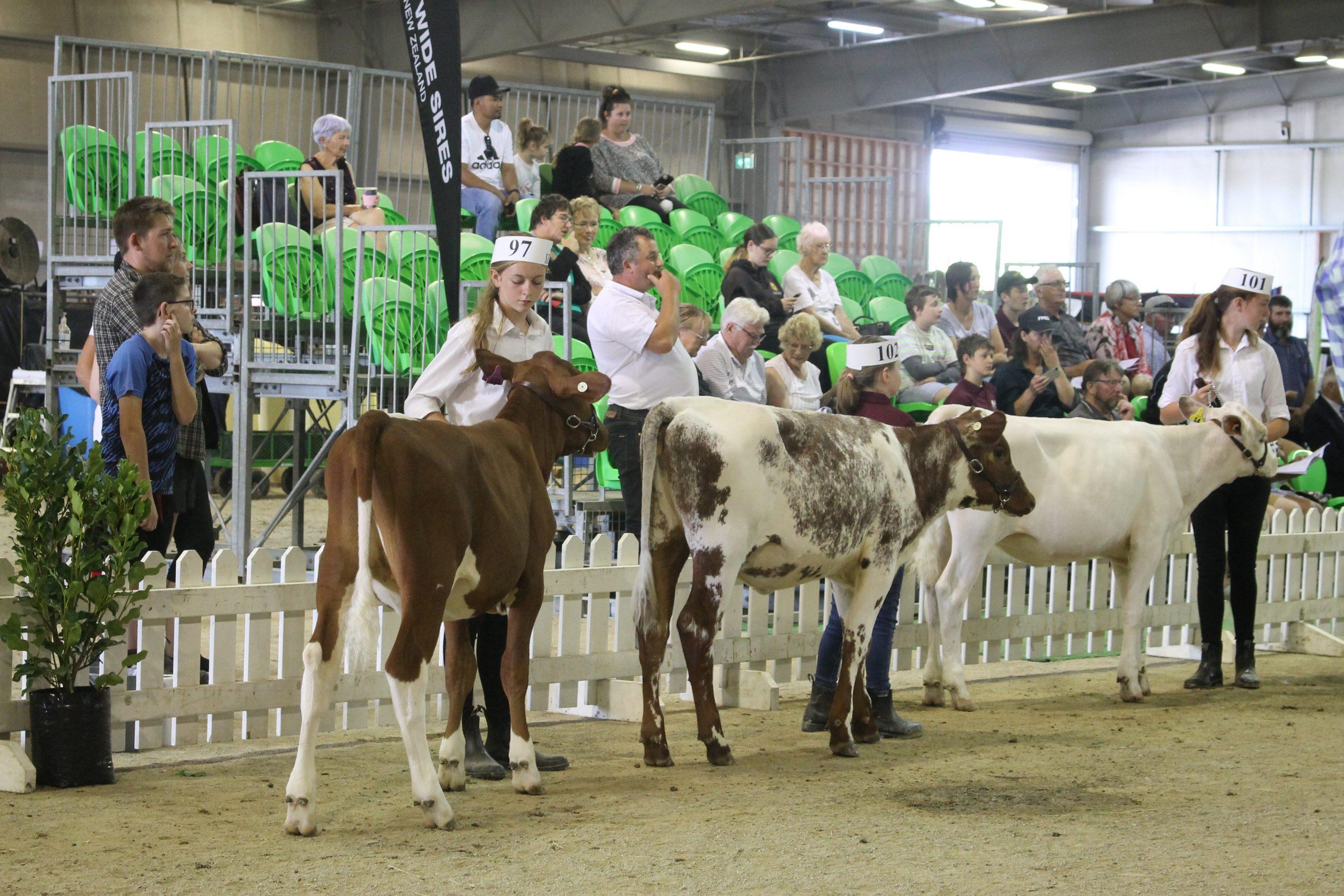 NZ Dairy Event 2021
